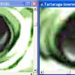 simulated7web